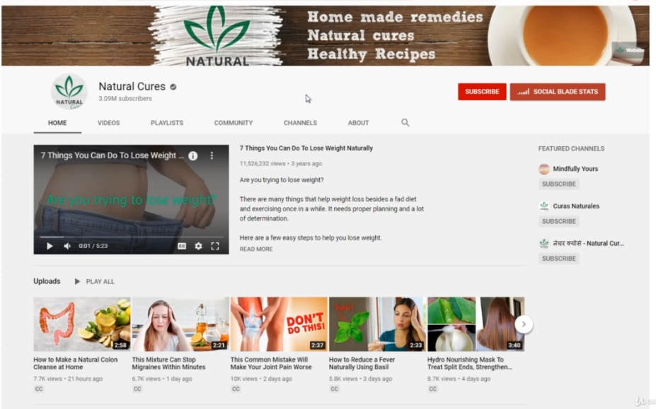 PHOTO OF NATURAL CURES CHANNEL How to start a YouTube channel successful without showing Your Face