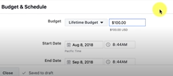 Photo of Budget of $100: Facebook Ads Marketing