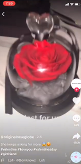 PHOTO OF TIKTOK VIDEO FOR 3rd DAY 2nd VIDEO