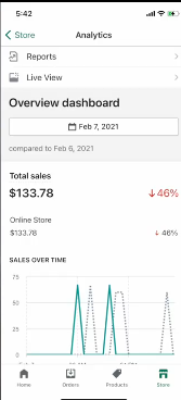 PHOTO OF 5th DAY SALES REPORT ON SHOPIFY