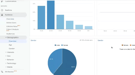 GOOGLE ANALYTICS STATISTICS: PHOTO OF DEMOGRAPHICS SECTION IN AUDIENCES SECTION