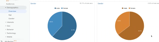 PHOTO OF PIE CHART OF DEMOGRAPHICS SECTION